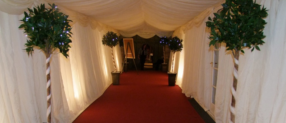 walkway, marquee, party, event, birthday