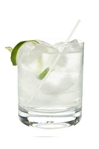 Gin and tonic water served over ice in a tumbler with a wedge of lime