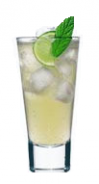Standard Russian Vodka, lime juice, Angostura Bitters topped with ginger beer, served over ice in a high ball glass with a fresh mint sprig
